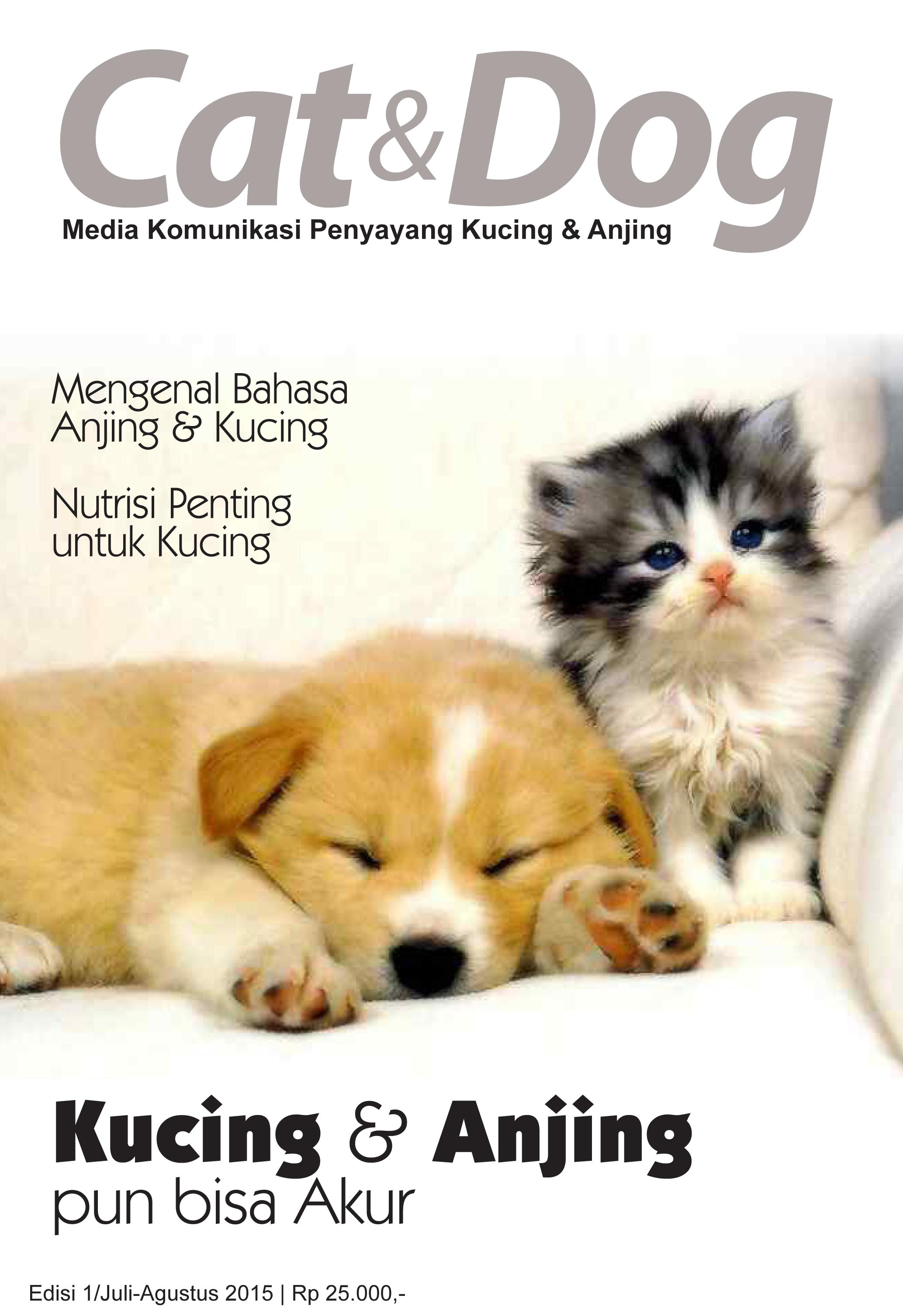 Cat & Dog cover b-3 OK